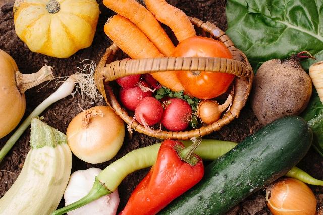 種子島の安納芋を産地直送で購入するなら【平山農園】