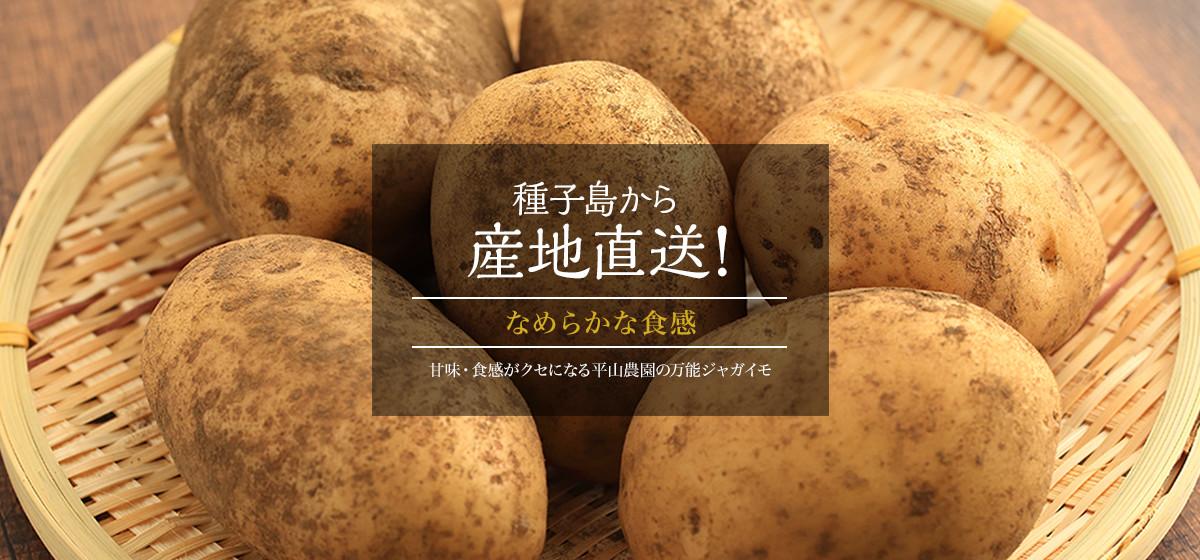 なめらかな食感 甘味・食感がクセになる平山農園の万能ジャガイモ