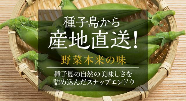 野菜本来の味 種子島の自然の美味しさを詰め込んだスナップエンドウ